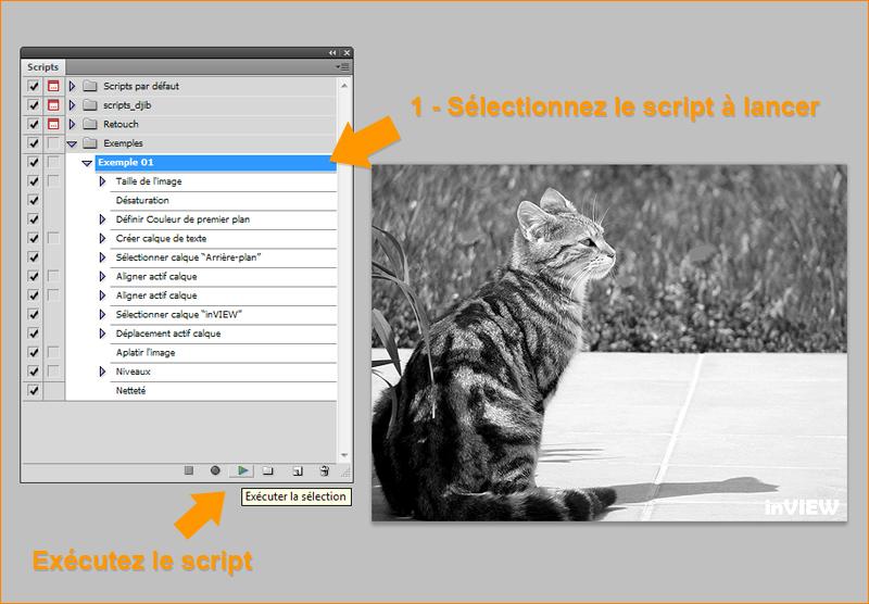 Exécuter un script sur une image