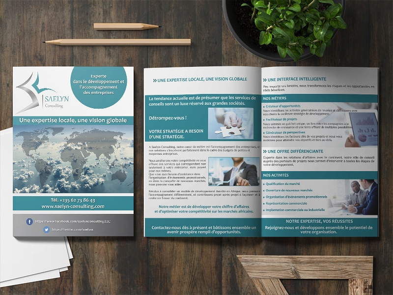 vignette brochure saelyn